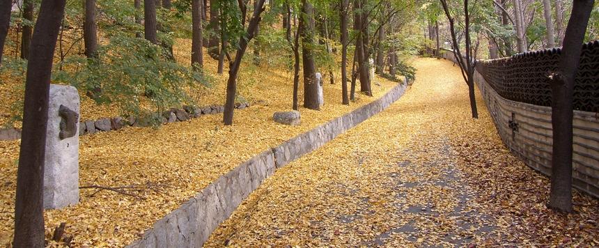 낙산에 조성된 십자가의 길 가을 풍경.